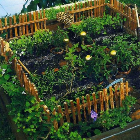 Огород в доу